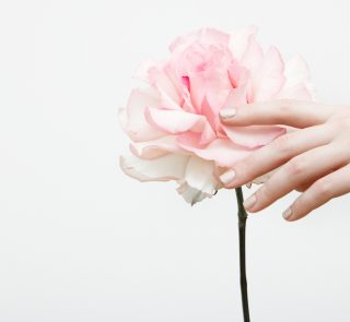 5 Muted Nail Polish Colors to Try This Spring